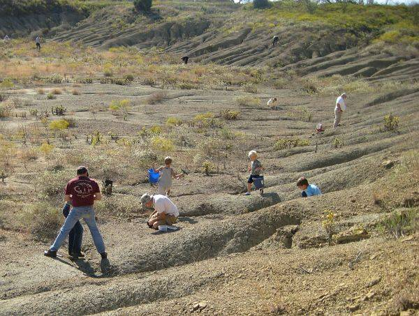 Sperm touches skin it causes abscess
